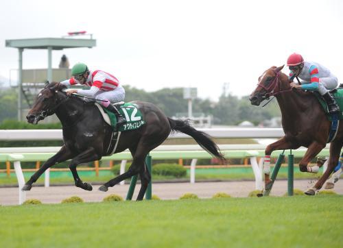 2014-函館2歳S