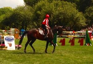 44th-horseshow6