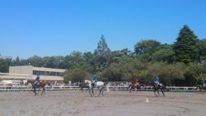 45th-horseshow2
