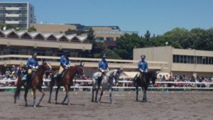 45th-horseshow3